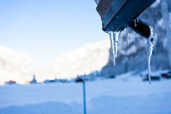 The cold icicles of Switzerland royalty free stock images