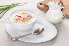 Cold kefir soup Stock Images