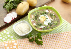 Cold kvass soup with dill and yolk, russian traditional dish - okroshka Royalty Free Stock Photography