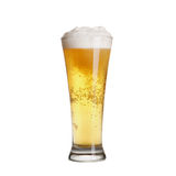 Cold lager beer in glass Royalty Free Stock Images