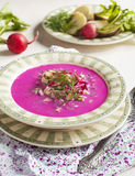 Cold Latvian soup. Vegetable soup with beetrots. Royalty Free Stock Photo