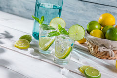 Cold lemonade with mint leaf in sunny garden Royalty Free Stock Photos