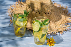 Cold lemonade in the sunny garden Royalty Free Stock Photography