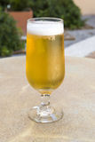 Cold light beer cup on a hot summer day Royalty Free Stock Images