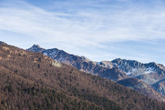 Cold light on rocky mountain peaks and larch forest Royalty Free Stock Photography
