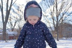 Cold little girl with rosy cheeks playing in the snow Royalty Free Stock Photography