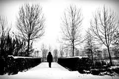 Cold loneliness Stock Image