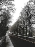A Cold and Lonely Winter. This image reflects the cold and loneliness of the winter, projected by the leafless trees. The black of the road and the white of the royalty free stock photography