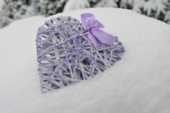 Cold love Royalty Free Stock Photo