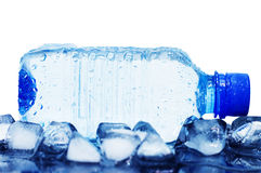 Cold mineral water bottle with ice cubes Stock Image