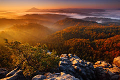 Cold misty foggy morning with sunrise in a fall valley of Bohemian Switzerland park. Hills with fog, landscape of Czech Republic,. Europe Stock Photos