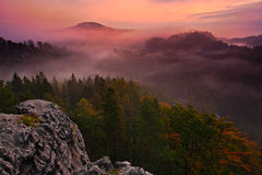Cold misty foggy morning with twilight sunrise in a fall valley of Bohemian Switzerland park. Hills with fog, landscape of Czech R Stock Photos