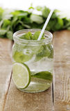 Cold mojito with a straw Royalty Free Stock Images