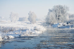 Cold morning Royalty Free Stock Images