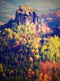 Cold morning in autumnal nature at beginning of November. Colorful fall morning Royalty Free Stock Photo