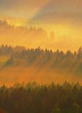 Cold morning at the end of summer. Colorful summer morning with strong golden rays and colorful fog between hills Stock Photography