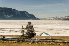Cold morning landscape of frozen Little Shuswap Lake British Columbia Canada. Nature snow forest white winter mountain blue frost ice travel beautiful outdoors royalty free stock image