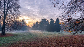 Cold morning sunrise. Autumnal cold morning on meadow with hoarfrost on plants and beautiful colors at sunrise,Italy near Milan royalty free stock photos