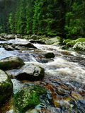Cold mountain river with big stones. River Vydra - mountain cold river with big stones, national park Sumava, Europe Royalty Free Stock Images