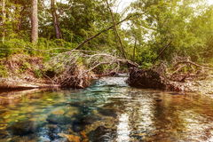Cold mountain river - creek Stock Photos