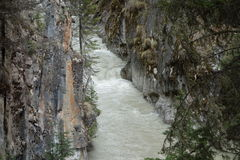 A cold mountain river. Stock Photos