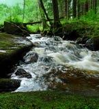 Cold mountain stream Stock Image