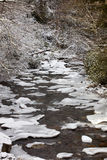 Cold Mountain Stream Stock Images