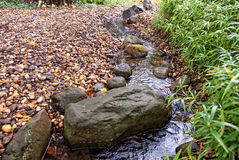Cold mountain stream. Royalty Free Stock Photography