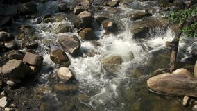 Cold mountain water flows between stones. stock footage