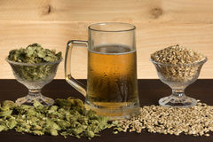 Cold mug of beer, with hops and malts Royalty Free Stock Photos