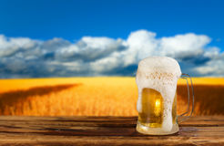 Cold mug of beer. In a landscape royalty free stock photography