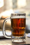 Cold Mug of IPA Beer Stock Images