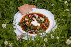 Cold okroshka soup with kvass on grass background Royalty Free Stock Image