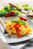 Cold Pasta. Dish of cold pasta with cherry tomatoes, cheese, oil and basil Stock Photos
