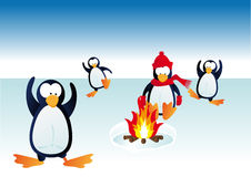 Cold penguins Royalty Free Stock Photos