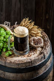 Cold pint of dark beer with ingredients, wheat and hops Stock Images