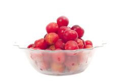 Cold plums in a frozen bowl  Royalty Free Stock Photos