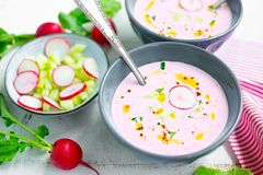 Cold radish soup in a bowl Stock Image