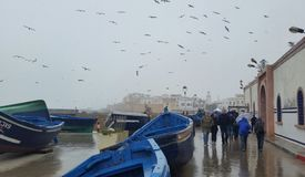 Cold rainy day by the sea royalty free stock photos