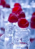 Cold raspberries Stock Photo