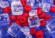 Cold raspberries Stock Photos