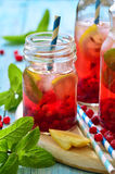 Cold redcurrant tea with lemon and mint. Stock Image