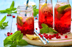 Cold redcurrant tea with lemon and mint. Royalty Free Stock Image