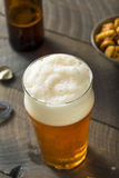 Cold Refreshing American Lager Crafter Beer Stock Photo