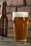 Cold Refreshing American Lager Crafter Beer Stock Image