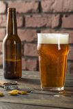 Cold Refreshing American Lager Crafter Beer Royalty Free Stock Image