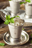 Cold Refreshing Classic Mint Julep Royalty Free Stock Photos