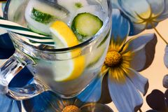 Cold refreshing drink with lemon and cucumber. Water with ice cubes, cucumber, and lemon on a pretty floral tray Stock Image