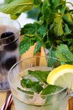 Cold refreshing drinks with lemon. Water with mint ice cubes and lemon Stock Image