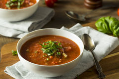Cold Refreshing Gazpacho Soup Stock Photography